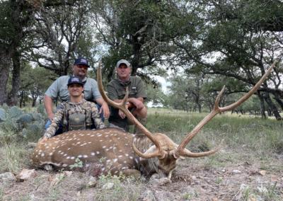 ccc-ranch-axis-deer-3